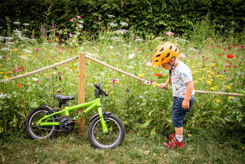 summer days on children's bikes